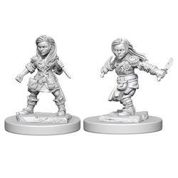 DUNGEONS AND DRAGONS NOLZUR'S MARVELOUS UNPAINTED MINIATURES HA