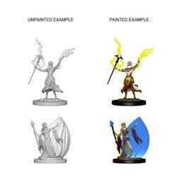 DUNGEONS AND DRAGONS NOLZUR'S MARVELOUS UNPAINTED MINIATURES EL