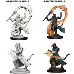 D&D NOLZUR'S MARVELOUS UNPAINTED MINIATURES TIEFLING MALE SORCE