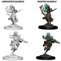 D&D NOLZUR'S MARVELOUS UNPAINTED MINIATURES AIR GENASI FEMALE R