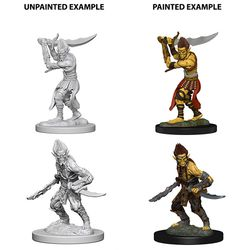 DUNGEONS AND DRAGONS NOLZUR'S MARVELOUS UNPAINTED MINIATURES GI