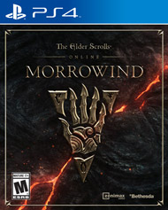 Elder Scrolls Online, The Morrowin (Playstation 4) [USED]