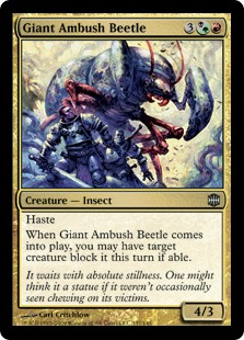 Giant Ambush Beetle